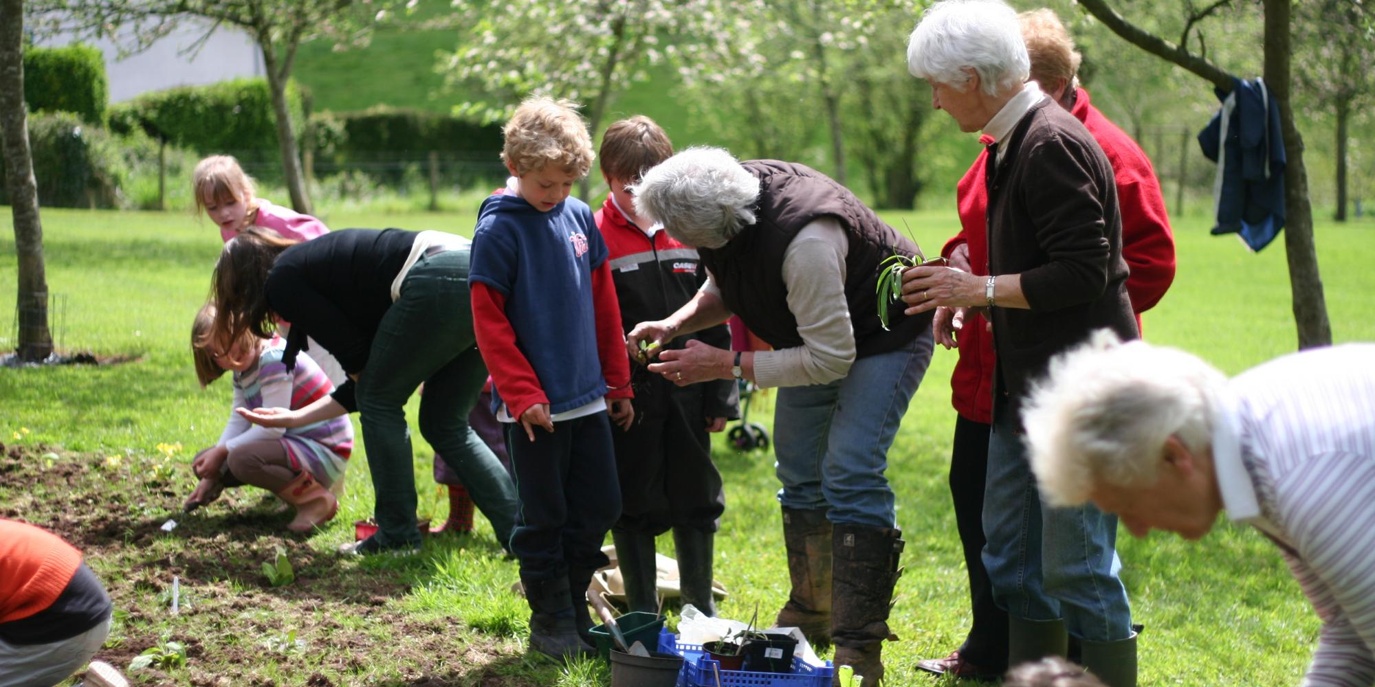 Planting wildflowers in Bickleigh orchard
